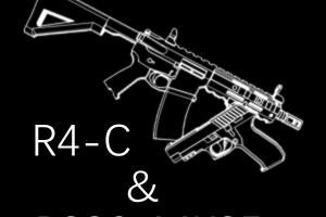 [Rainbow Six: Siege] R4-C & P226-MK25 Mod for Ravenfield